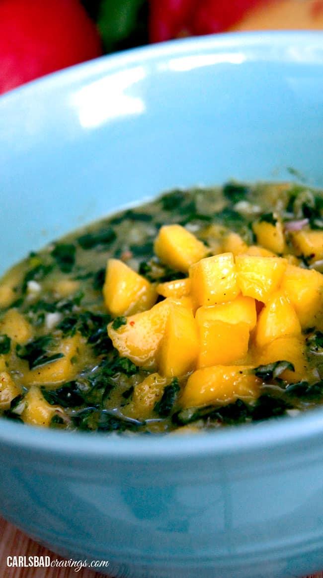 Mango-Honey-Jalapeno-Chimichurri---16