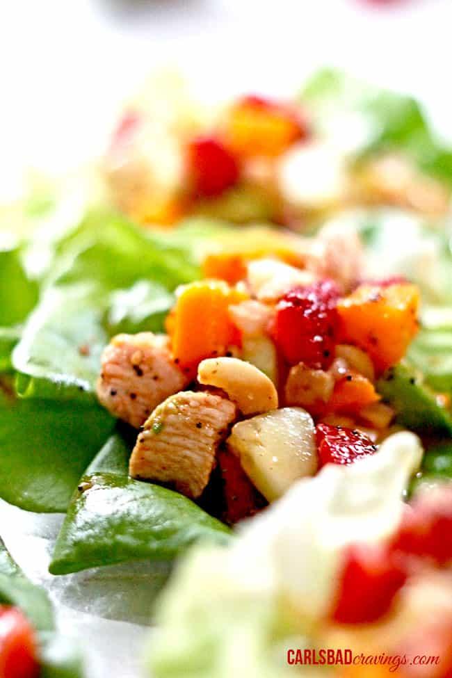 poppyseed-chicken-fruit-salad-lettuce-wraps05