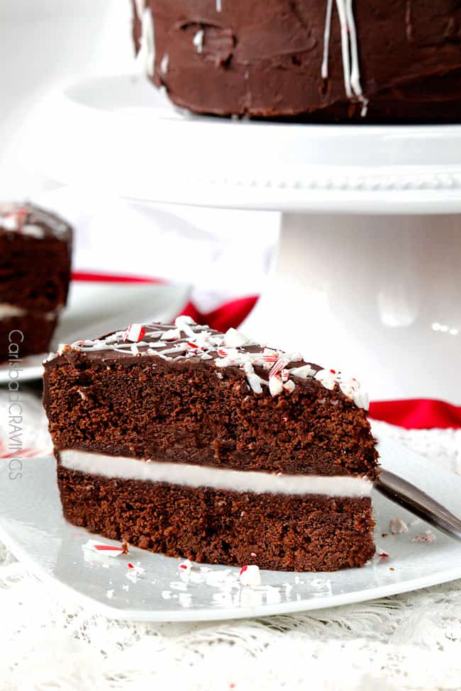 a side view of a slice of moist Chocolate Peppermint Cake