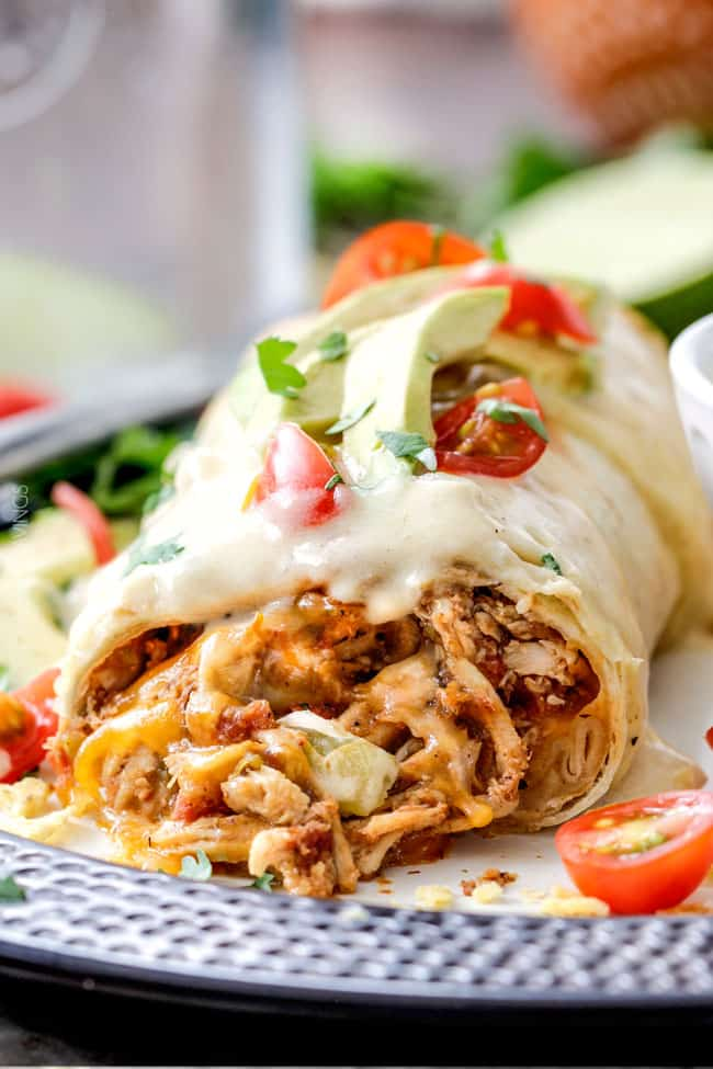 Shredded Mexican Chicken in a burrito with cheese.