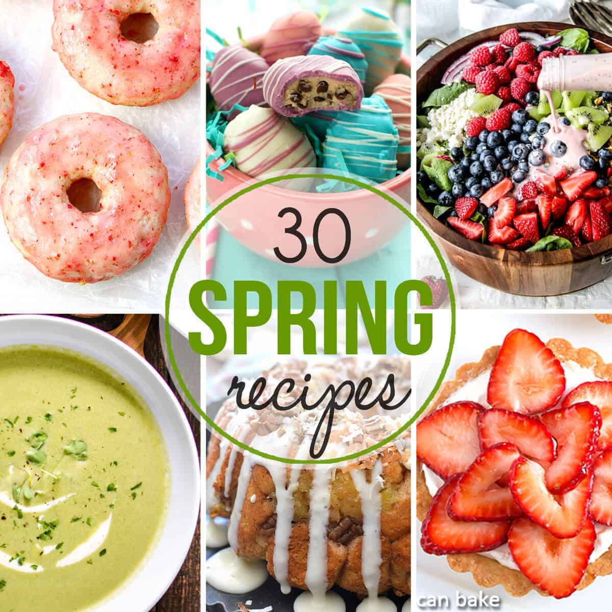Over 30 Spring Recipes from appetizers, sides, main dishes to desserts!