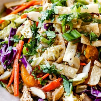 Chinese Chicken Salad with Sesame Ginger Dressing (VIDEO!)