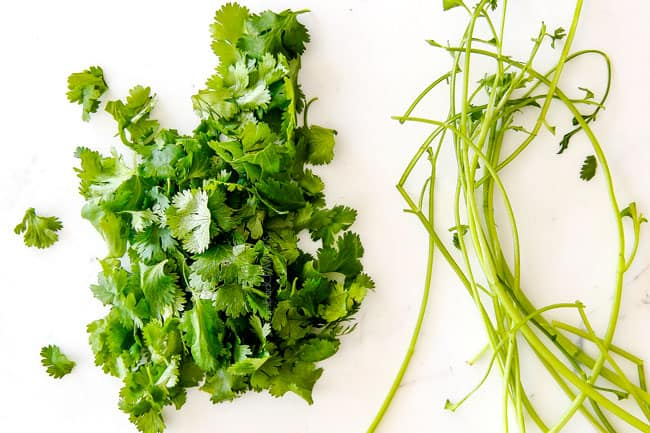showing how to make pico de gallo by taking cilantro leaves off of the stem