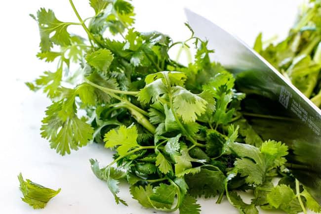 chopping cilantro showing how to make easy pico de gallo