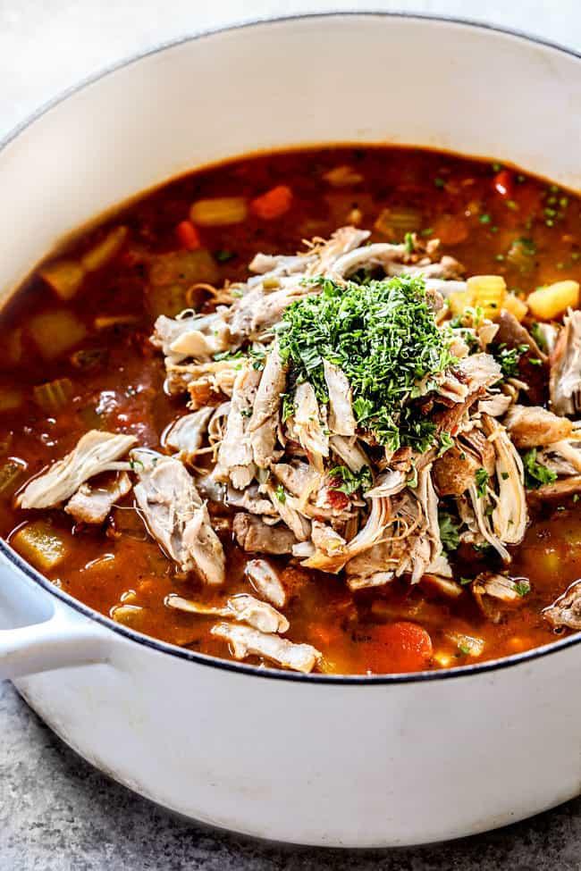 showing how to make Caldo de Pollo Mexicano (Mexican Chicken Soup) by adding sshredded chicken corn and cilantro to the pot