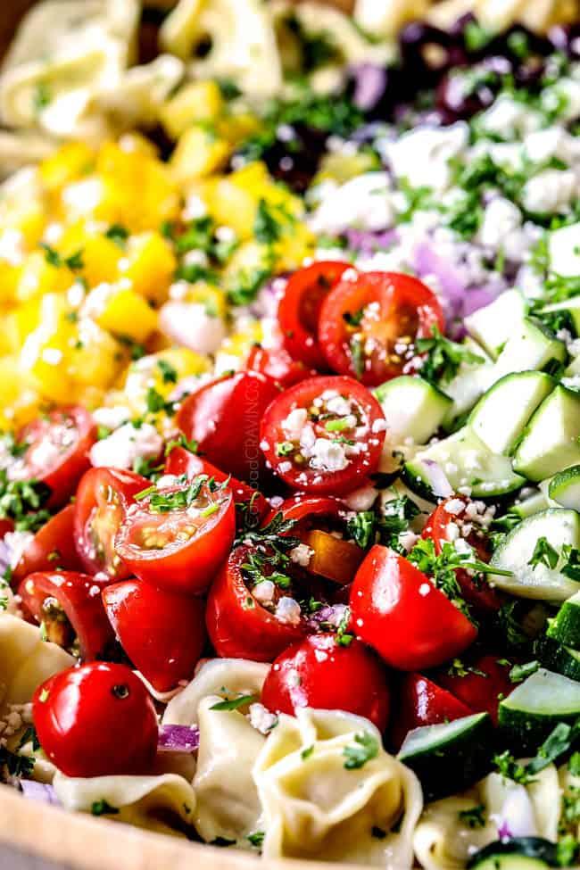 Best Ever Greek Pasta Salad With Tortellini Amp Sun Dried