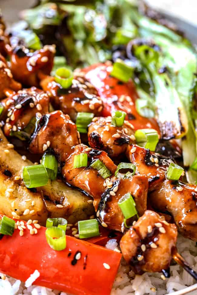 side view of grilled yakitori with white rice and yakitori sauce